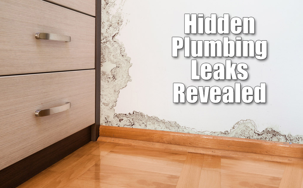 Check for Plumbing Leaks